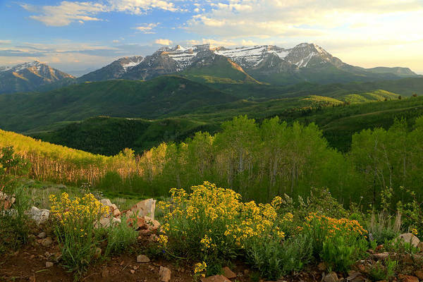 Timpanogos From Mill Canyon Peak. Art Print