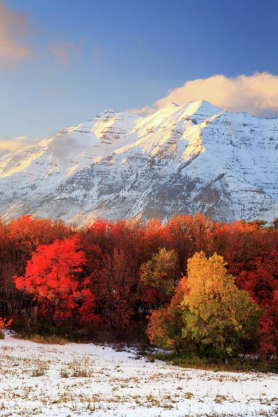 Pleasant Photograph - Timpanogos In Full Autumn Glory. by Johnny Adolphson