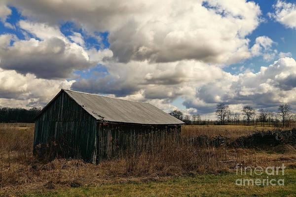 Photograph - Tin Roof Barn by Rachel Cohen