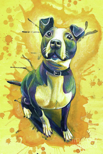Pitbull Painting - Tink by Michael Volpicelli
