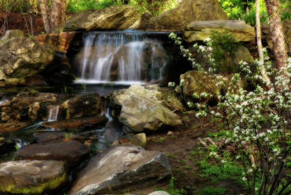 Photograph - Tiny Stream 3  by Angie Tirado
