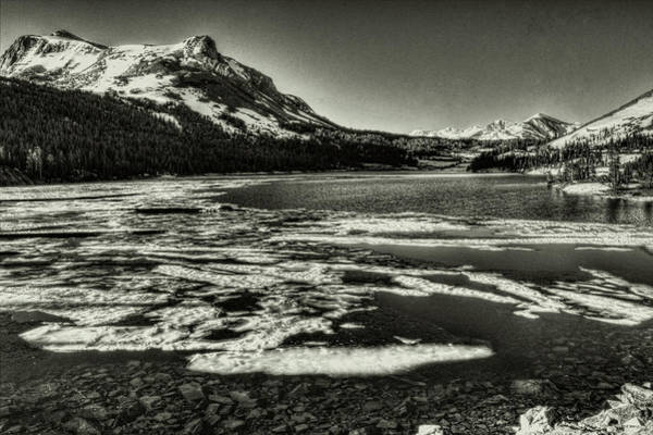 Tioga Pass Lake Ellery Early Summer Art Print