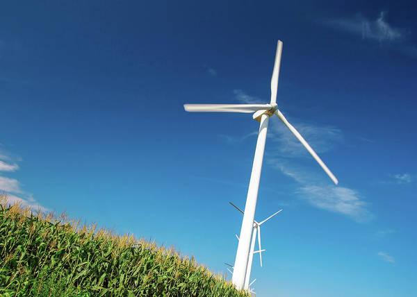 Wall Art - Photograph - Tipping Windmills by Todd Klassy