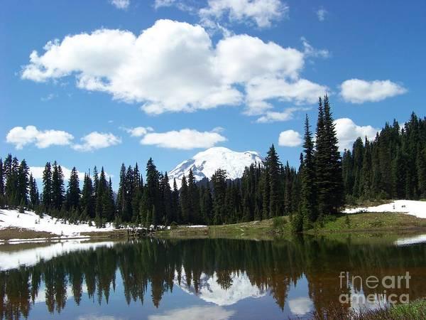 Photograph - Tipsoo Lake Reflection by Charles Robinson