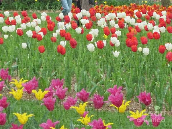 Photograph - Tiptoe Through The Tulips by Kathie Chicoine