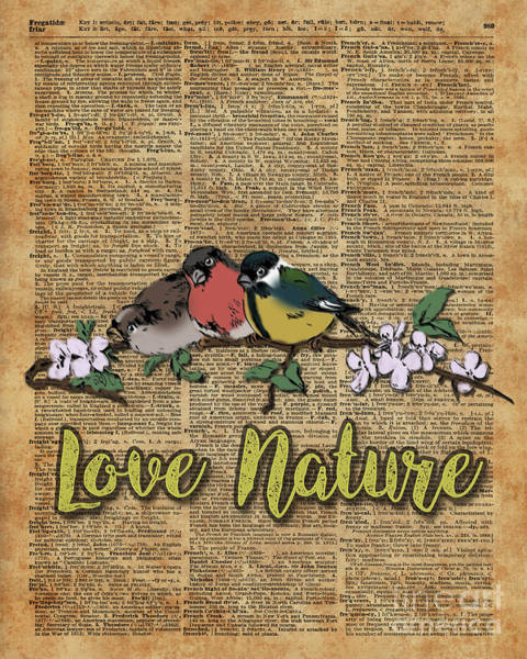 Wall Art - Digital Art - Tit,bullfinch And Sparrow On Branch Over Old Book Page  by Anna W