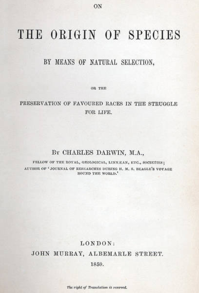 Charles Drawing - Title Page Of The Origin Of Species By Charles Darwin by Charles Darwin