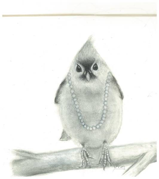 Titmouse Drawing - Titmouse With Pearls by Danielle McCoy