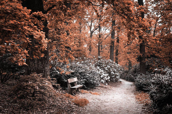 Photograph - To Blend With Nature. Autumn Mood by Jenny Rainbow
