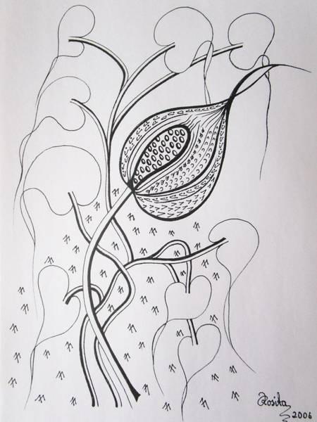 Drawing - To Burst by Rosita Larsson
