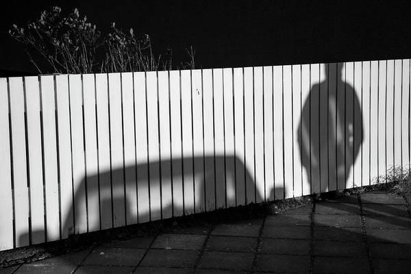 Photograph - On Fence by Hitendra SINKAR