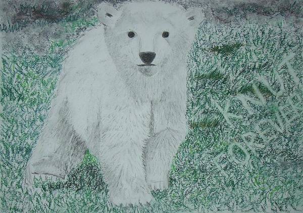 Polar Bear Drawing - to Knut with love by Cybele Chaves