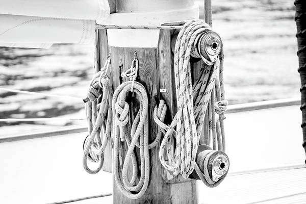 Wall Art - Photograph - To Sail Or Knot by Greg Fortier