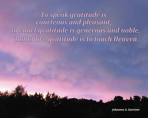 Digital Art - To Speak Gratitude Is Pleasant by Julia L Wright