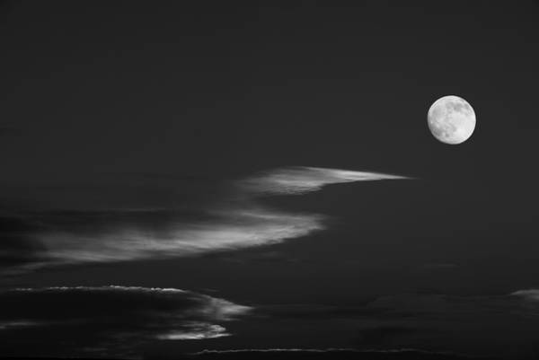 Wall Art - Photograph - To The Moon by Don Spenner