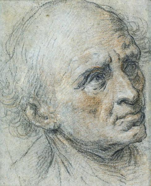 Healing Drawing - Tobias Healing Tobit by Govert Flinck