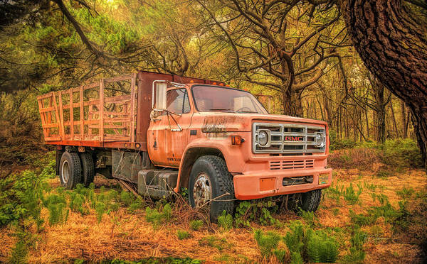 Photograph - Toledo Truck by Bill Posner