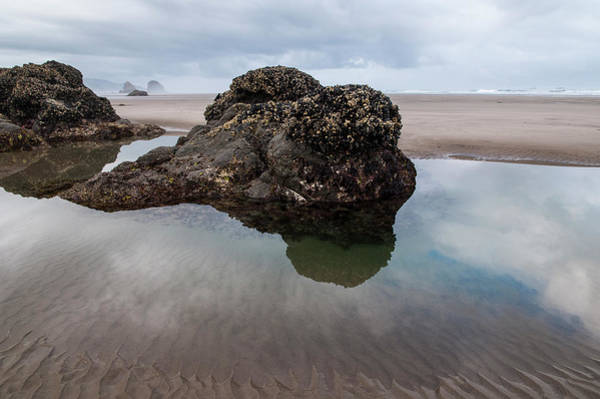 Photograph - Tolovana Beach At Low Tide by Robert Potts