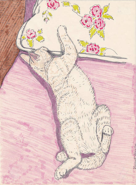 Orange Tabby Drawing - Tom Kitty Heaven by Vincent Mantia