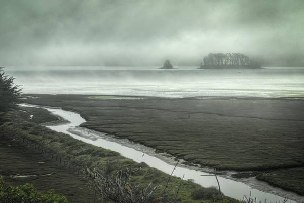 Photograph - Tomales Bay Mist by Peter Dyke
