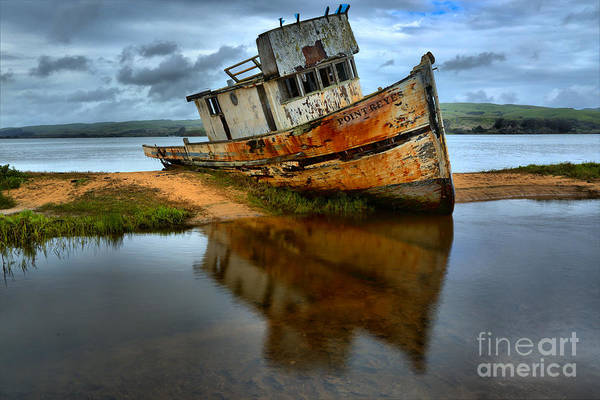 Photograph - Tomales Bay Ship Wreck by Adam Jewell