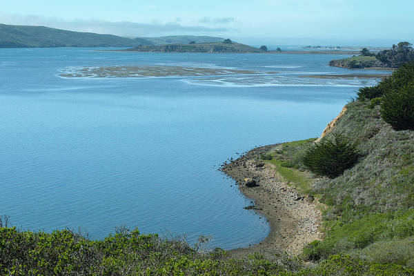 Photograph - Tomales Bay View by Peter Dyke