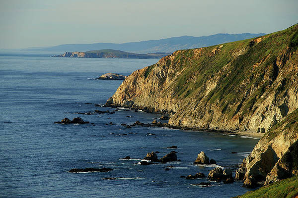 Photograph - Tomales Point by David Armentrout