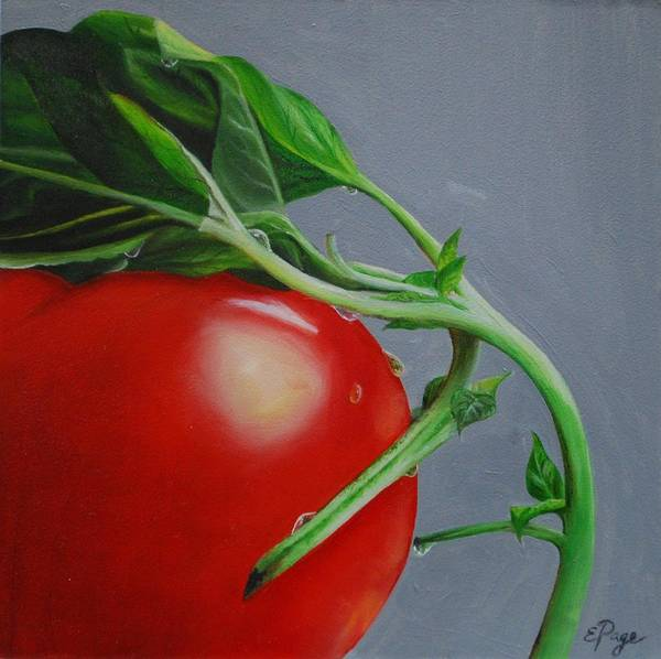 Painting - Tomato And Basil by Emily Page