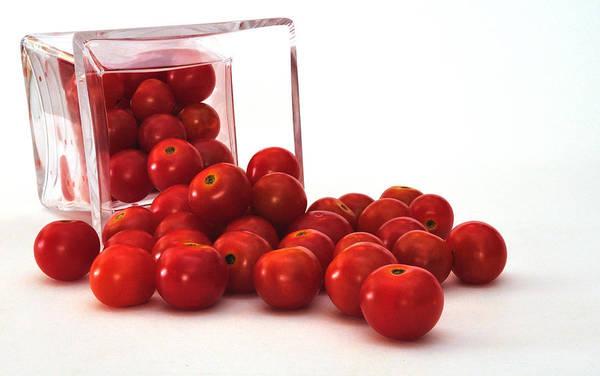 Photograph - Tomato Harvest by Mark Fuller