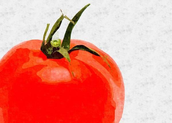 Ingredient Digital Art - Tomato Oil Painting by Hamik ArtS