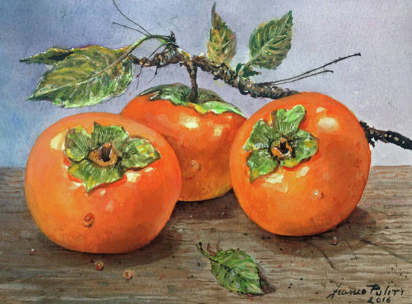 Persimmon Painting - Persimmons by Franco Puliti