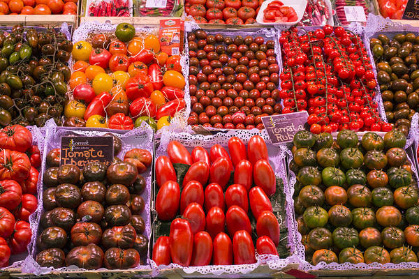 Photograph - Tomatoes by Gary Lengyel