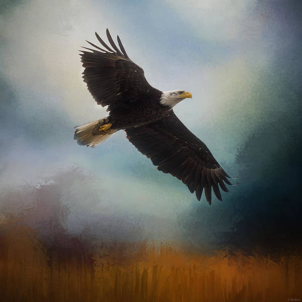 Painting - Tomorrow - Eagle Art by Jordan Blackstone