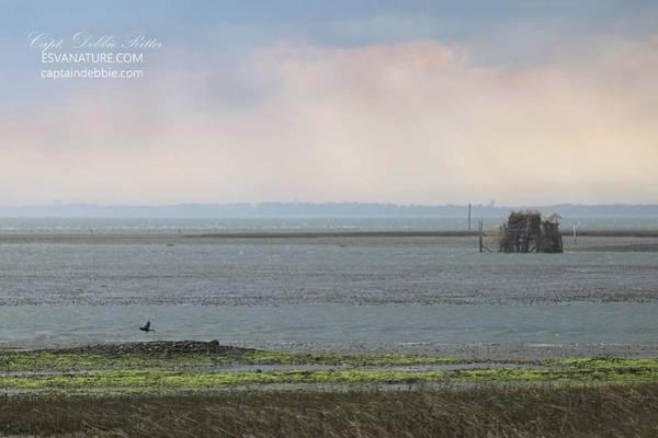 Photograph - Toms Cove by Captain Debbie Ritter