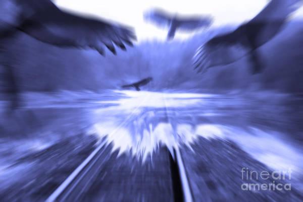 Digital Art - Too Fast  by Cathy Beharriell