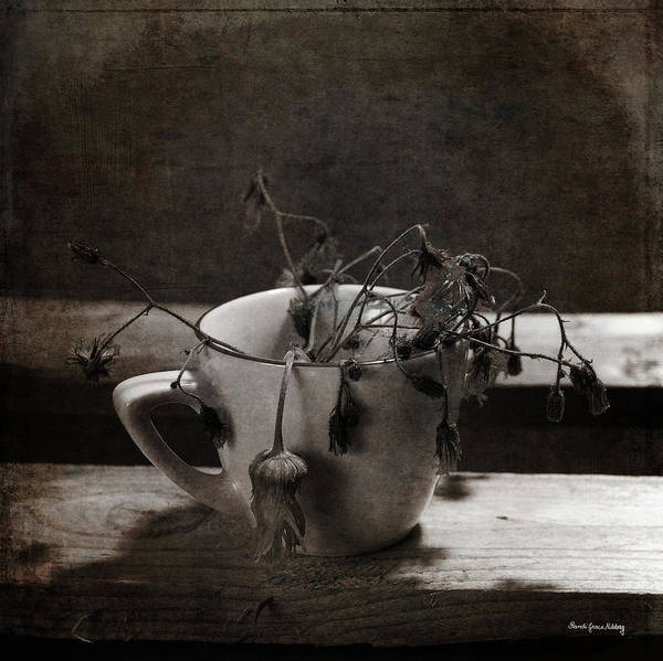 Photograph - Too Late For A Drink by Randi Grace Nilsberg