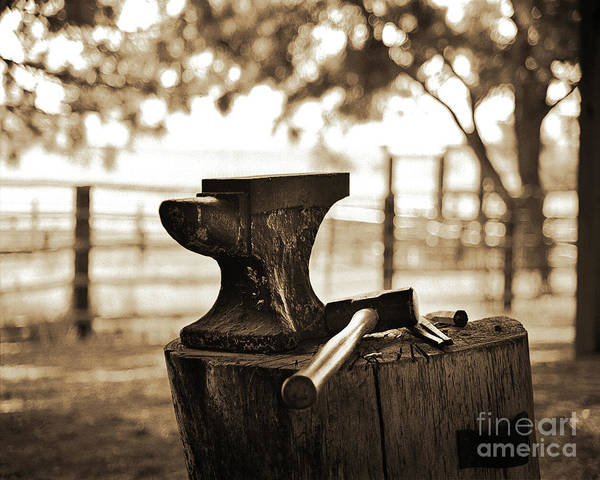 Farrier Photograph - Tools Of The Trade Too by Don Schimmel