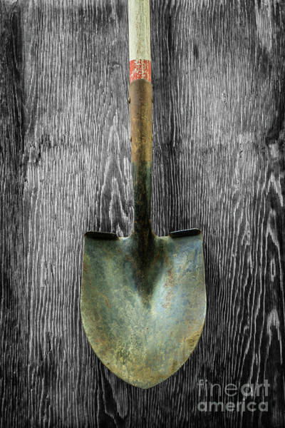 Wall Art - Photograph - Tools On Wood 15 On Bw by YoPedro