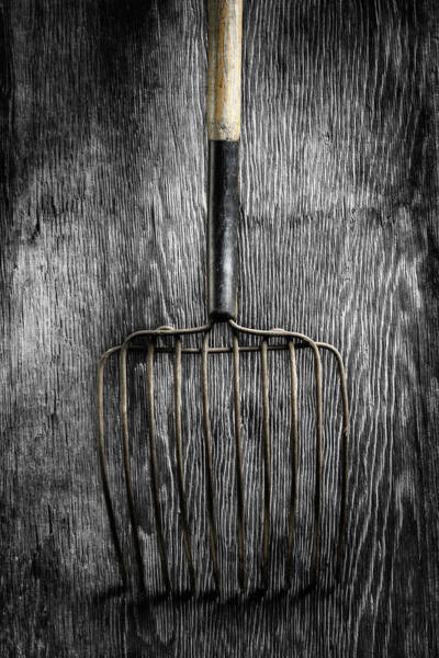 Wall Art - Photograph - Tools On Wood 25 On Bw by YoPedro