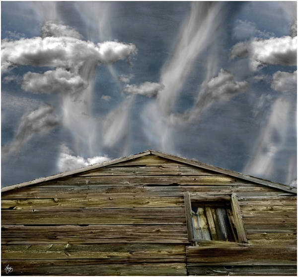 Photograph - Top Of The Barn by Wayne King