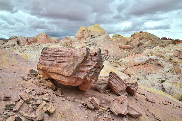 Photograph - Top Of The World - Valley Of Fire by Ray Mathis