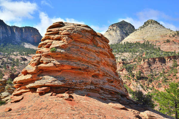 Photograph - Top Of Zion by Ray Mathis