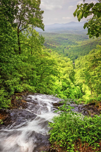Wall Art - Photograph - Top Overlook At Amicalola Falls by Debra and Dave Vanderlaan