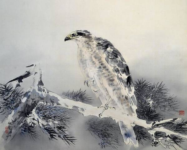 Wall Art - Painting - Top Quality Art - Eagle by Hashimoto Kansetsu