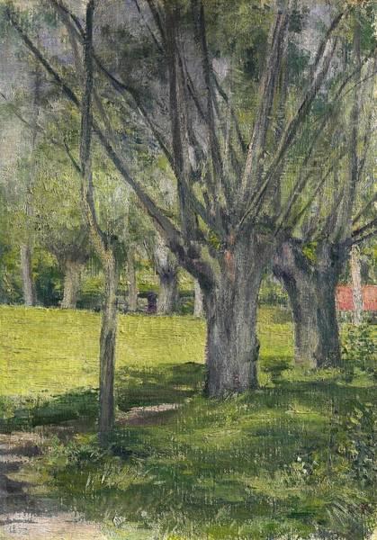 Wall Art - Painting - Top Quality Art - Willow Trees by Kuroda Seiki