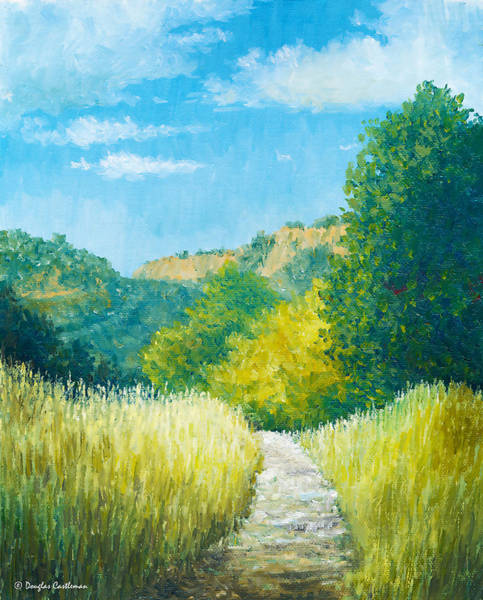 Painting - Topanga Trail Plein Air by Douglas Castleman