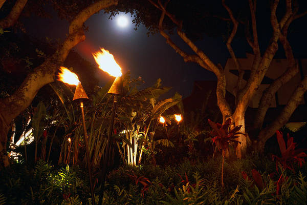 Torches Of Hawai Art Print by George Oze
