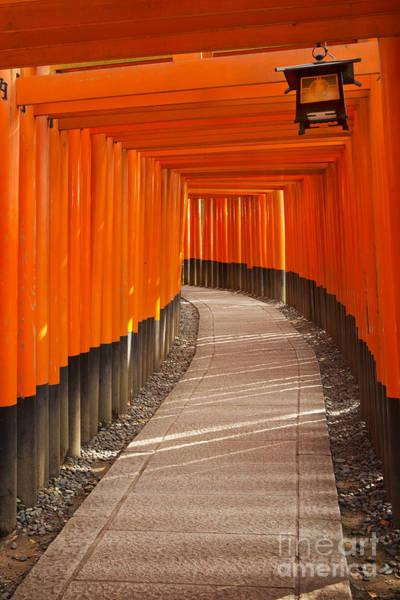 Wall Art - Photograph - Torii Gates Of The Fushimi Inari Shrine In Kyoto In Japan by Sara Winter