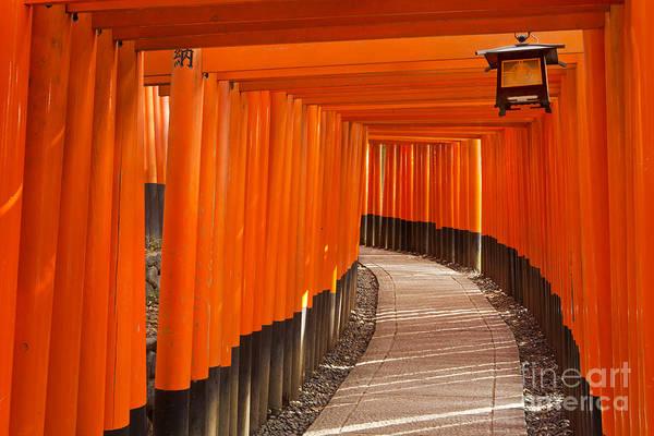 Wall Art - Photograph - Torii Gates Of The Fushimi Inari Shrine In Kyoto, Japan by Sara Winter