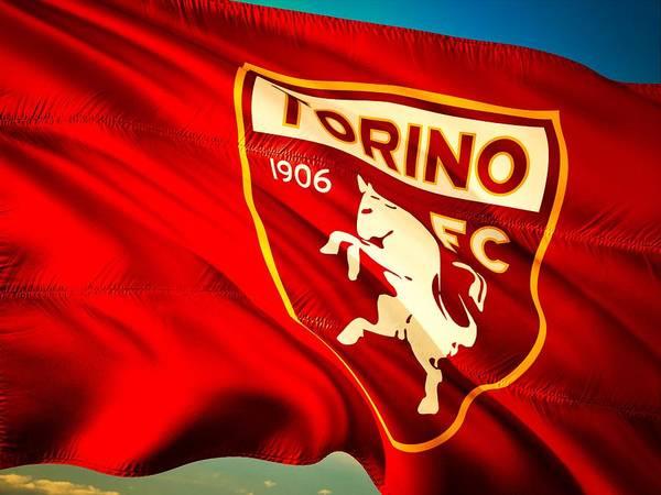 Italian Football Wall Art - Photograph - Torino F C  by Pixabay